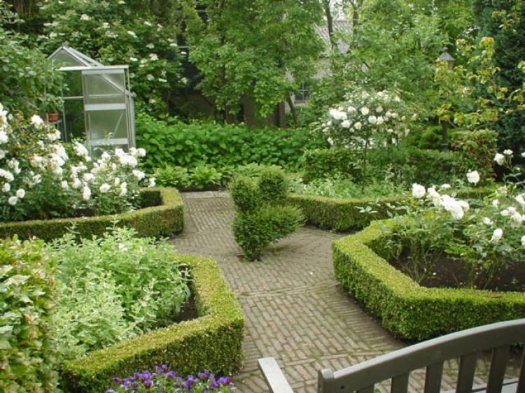 Tuinkunst 2000 zwijndrecht barendrecht d hovenier voor tuinaanleg ontwerp en onderhoud - Tuin ontwerp foto ...